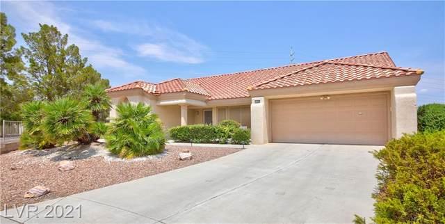 3108 Lotus Hill Drive, Las Vegas, NV 89134 (MLS #2316791) :: DT Real Estate