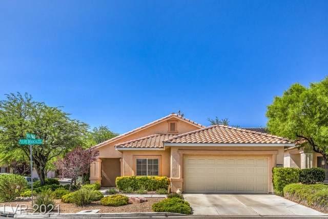 10605 Olivebranch Avenue, Las Vegas, NV 89144 (MLS #2316804) :: DT Real Estate