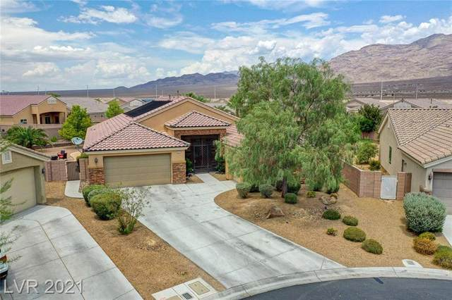 9117 Costa De Oro Court, Las Vegas, NV 89131 (MLS #2317161) :: Hebert Group | Realty One Group