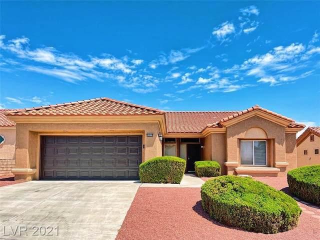 9812 Rosamond Drive, Las Vegas, NV 89134 (MLS #2317168) :: DT Real Estate