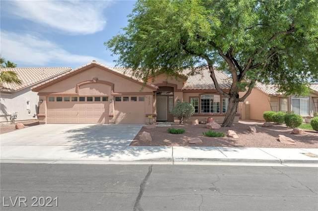 2732 Chokecherry Avenue, Henderson, NV 89074 (MLS #2317679) :: DT Real Estate