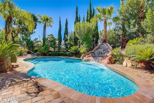 113 Tesoro Drive, Las Vegas, NV 89144 (MLS #2321277) :: Coldwell Banker Premier Realty
