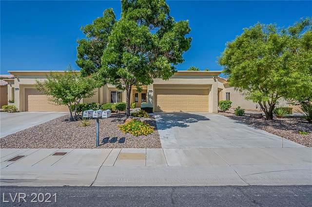 2403 Hallston Street, Las Vegas, NV 89134 (MLS #2321528) :: The Chris Binney Group   eXp Realty