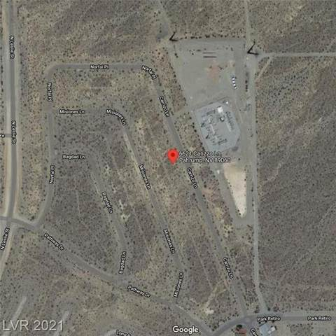6621 N Carizzo Lane, Pahrump, NV 89060 (MLS #2324723) :: Coldwell Banker Premier Realty