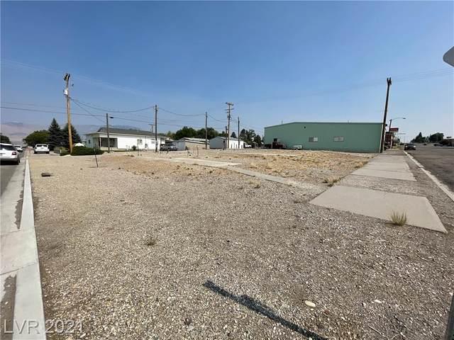 1100 Avenue C, Ely, NV 89301 (MLS #2325633) :: Lindstrom Radcliffe Group