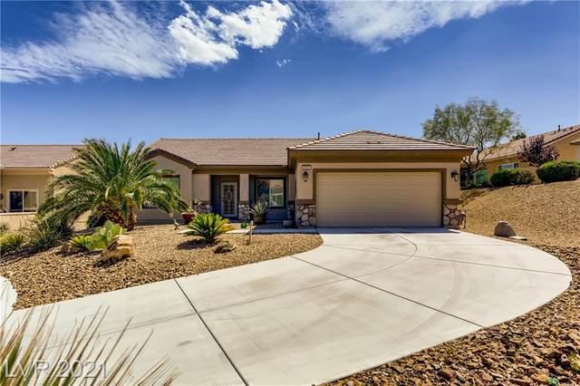 2923 Gander Court, North Las Vegas, NV 89084 (MLS #2325789) :: Keller Williams Realty