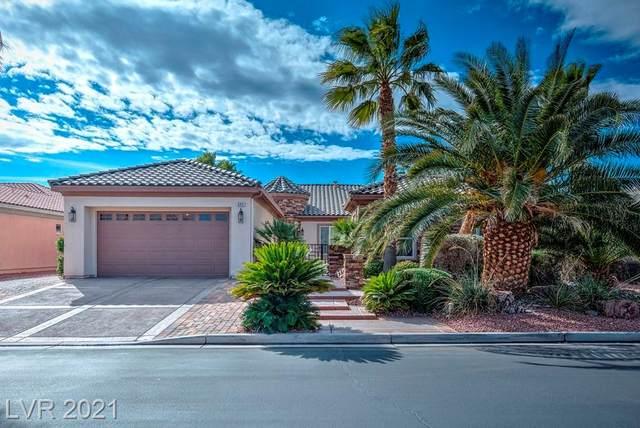 6891 Goose River Avenue, Las Vegas, NV 89131 (MLS #2326015) :: Lindstrom Radcliffe Group