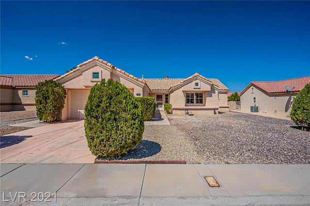 9040 Grayling Drive, Las Vegas, NV 89134 (MLS #2328352) :: The Melvin Team
