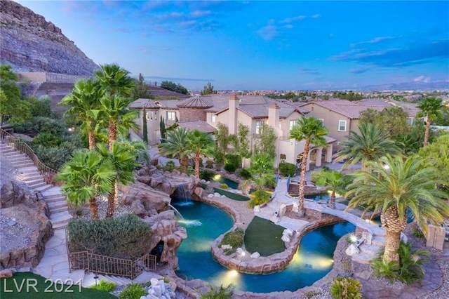 4291 San Alivia Court, Las Vegas, NV 89141 (MLS #2329354) :: Lindstrom Radcliffe Group