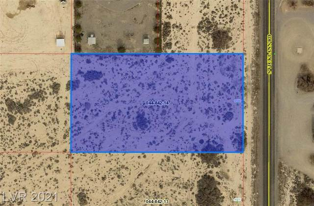 4590 S Vicki Ann Road, Pahrump, NV 89048 (MLS #2329849) :: Signature Real Estate Group