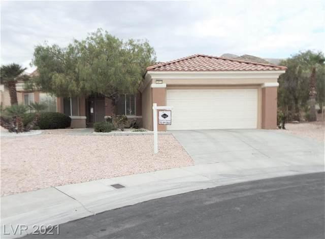 10613 Spring Garden Court, Las Vegas, NV 89134 (MLS #2333475) :: Hebert Group | eXp Realty
