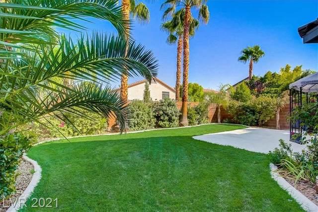 11024 Salernes Street, Las Vegas, NV 89141 (MLS #2333736) :: Hebert Group | eXp Realty