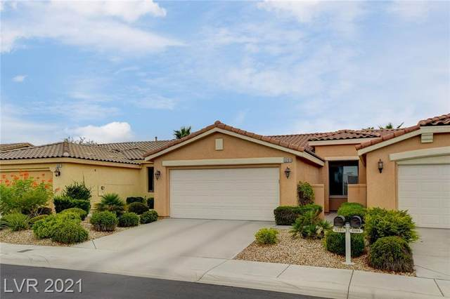5201 Progresso Street, Las Vegas, NV 89135 (MLS #2333945) :: Jeffrey Sabel