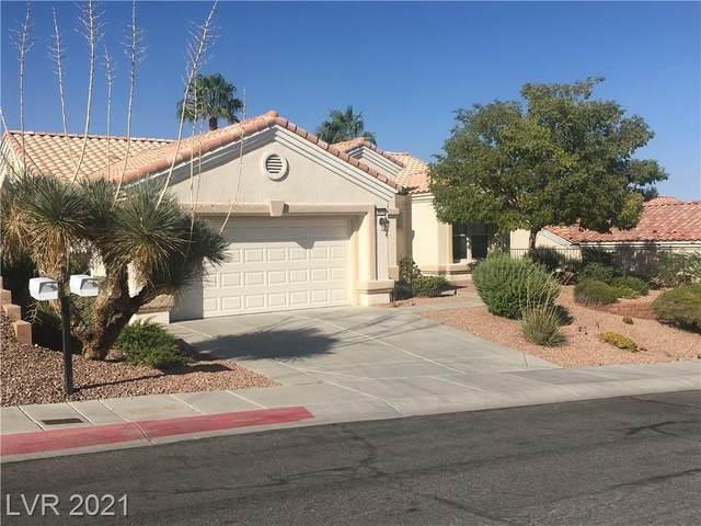 10412 Long Leaf Place, Las Vegas, NV 89134 (MLS #2334287) :: Kypreos Team