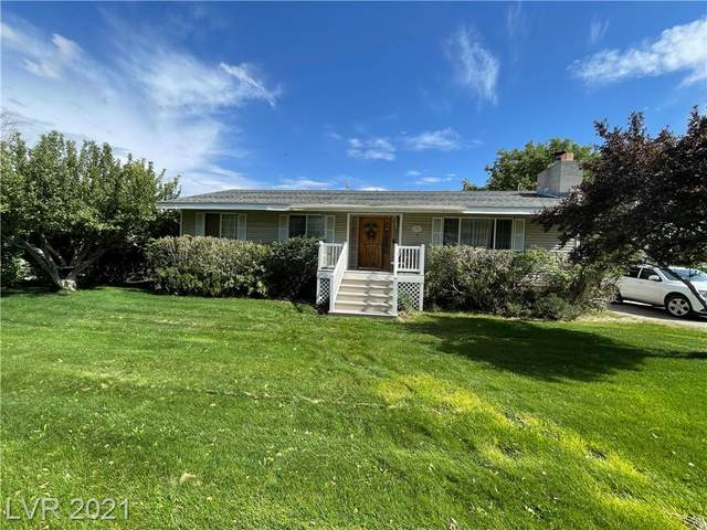 103 E Grant Avenue, Ely, NV 89301 (MLS #2335005) :: Galindo Group Real Estate