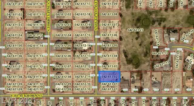 3141 S Spy Glass Avenue, Pahrump, NV 89048 (MLS #2335190) :: Jack Greenberg Group