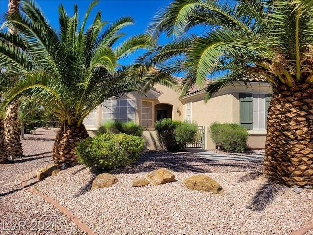 2834 Hayden Creek Terrace, Henderson, NV 89052 (MLS #2336893) :: Keller Williams Realty