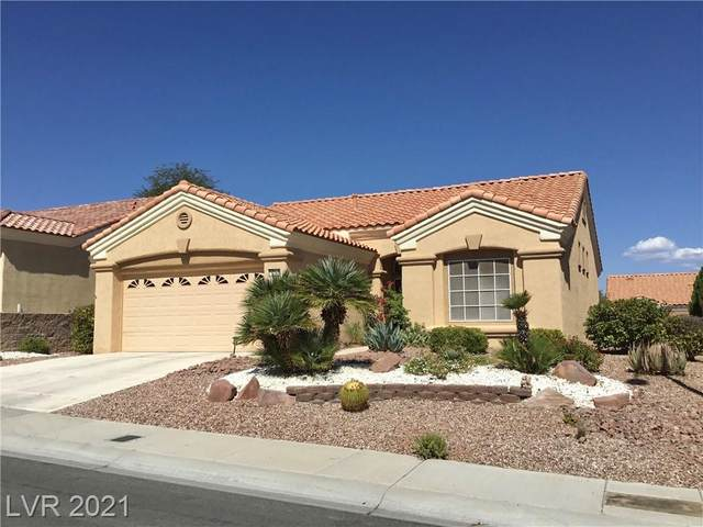 10304 Sawmill Avenue, Las Vegas, NV 89134 (MLS #2337723) :: Alexander-Branson Team | Realty One Group