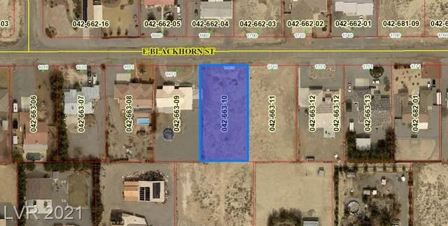 1691 Blackhorn Street, Pahrump, NV 89048 (MLS #2338133) :: Keller Williams Realty