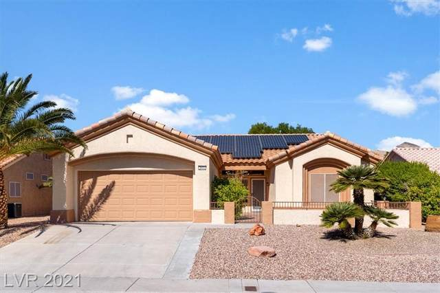 2605 Hope Forest Drive, Las Vegas, NV 89134 (MLS #2338813) :: The TR Team