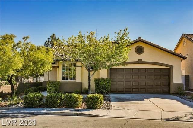 3232 Cherum Street, Las Vegas, NV 89135 (MLS #2340893) :: Custom Fit Real Estate Group