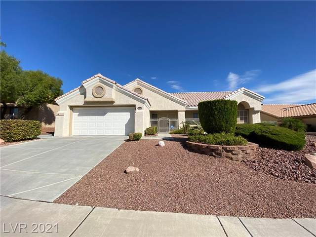 10044 Keysborough Drive, Las Vegas, NV 89134 (MLS #2341117) :: The TR Team