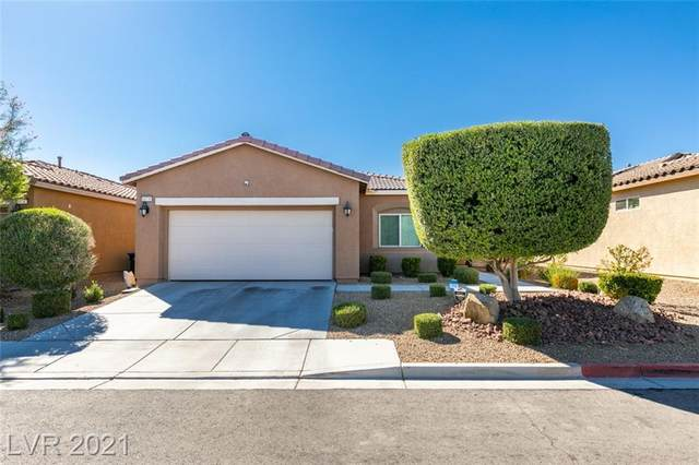 10739 Morning Frost Street, Las Vegas, NV 89179 (MLS #2341195) :: Coldwell Banker Premier Realty