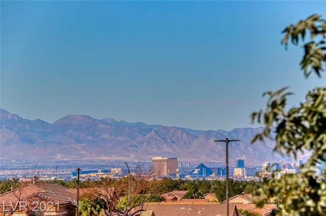 203 Horizon Peak Drive, Henderson, NV 89012 (MLS #2341410) :: Signature Real Estate Group