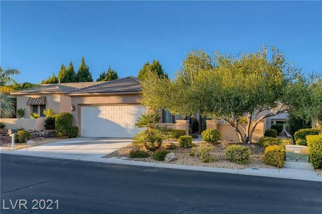 10256 Roma Madre Avenue, Las Vegas, NV 89135 (MLS #2342389) :: Hebert Group | eXp Realty