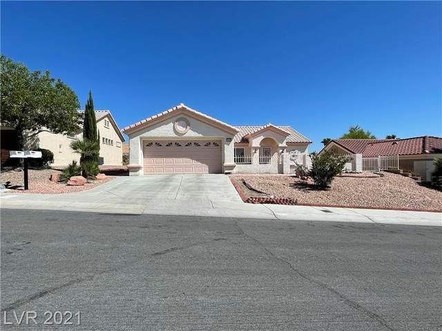10420 Linfield Place, Las Vegas, NV 89134 (MLS #2343150) :: The Chris Binney Group   eXp Realty