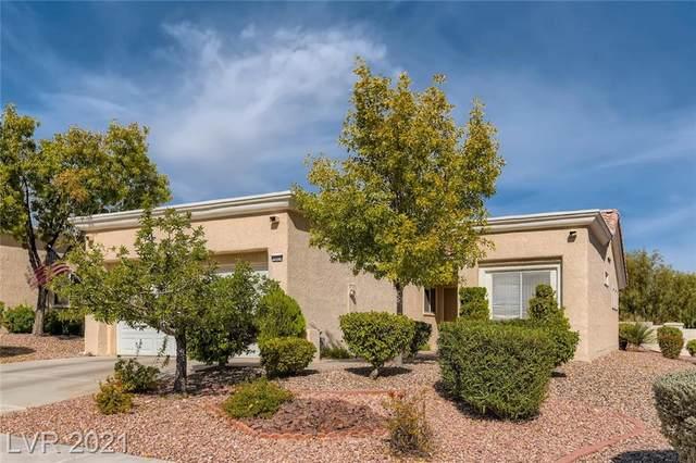 10024 Bundella Drive, Las Vegas, NV 89134 (MLS #2343335) :: The Shear Team