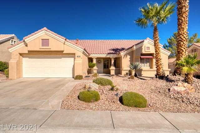 9216 Yucca Blossom Drive, Las Vegas, NV 89134 (MLS #2344201) :: The Shear Team