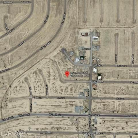 1550 W Cobalt Lane, Pahrump, NV 89060 (MLS #2345306) :: Vestuto Realty Group