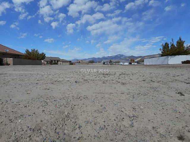 5450 E Barnwood, Pahrump, NV 89061 (MLS #1588999) :: Trish Nash Team