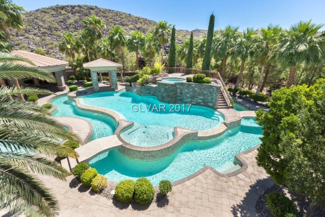 1187 Macdonald Ranch, Henderson, NV 89012 (MLS #1901481) :: Realty ONE Group