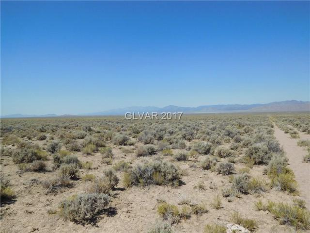 Vacant Land in Nye County, Other, NV 89317 (MLS #1919946) :: Trish Nash Team