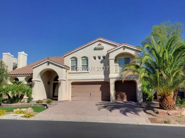 4420 Grey Spencer, Las Vegas, NV 89141 (MLS #1920270) :: The Snyder Group at Keller Williams Realty Las Vegas