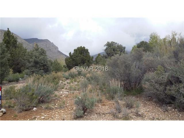 N Trout  Canyon Rd, Other, NV 89124 (MLS #1937314) :: Trish Nash Team