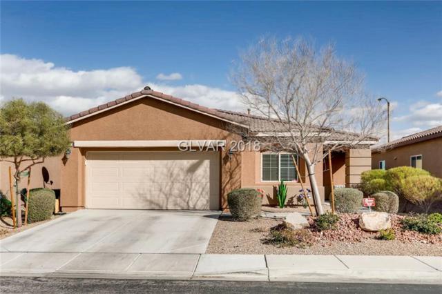 10730 Lightning Sky, Las Vegas, NV 89179 (MLS #1969551) :: Realty ONE Group