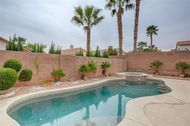 506 First Light, Henderson, NV 89052 (MLS #1975303) :: Realty ONE Group