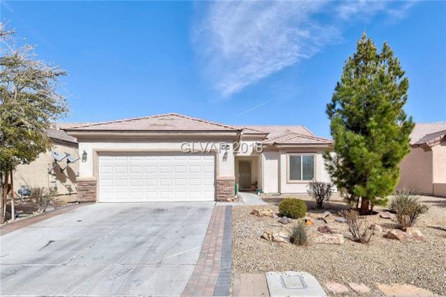 7742 Coast Jay, North Las Vegas, NV 89084 (MLS #1975933) :: Signature Real Estate Group