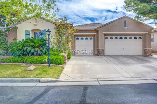 10507 Garden Rose, Las Vegas, NV 89135 (MLS #1976708) :: Signature Real Estate Group