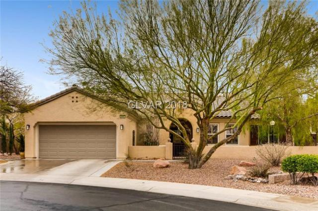 3005 Noblesville, Henderson, NV 89052 (MLS #1977945) :: Catherine Hyde at Simply Vegas