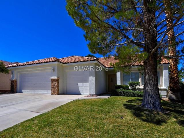 3429 Camsore Point, Las Vegas, NV 89129 (MLS #1979054) :: Realty ONE Group