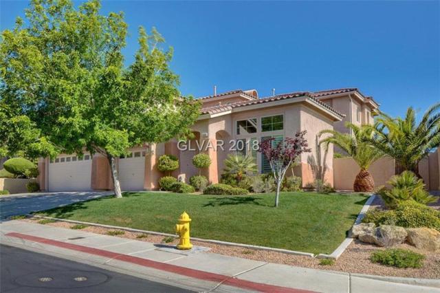 11400 Rancho Villa Verde, Las Vegas, NV 89138 (MLS #1985013) :: Realty ONE Group