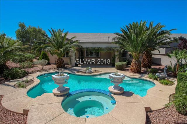 6874 Barred Dove, North Las Vegas, NV 89084 (MLS #2003043) :: Realty ONE Group