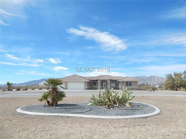 1291 W Marion Miller, Pahrump, NV 89048 (MLS #2025960) :: Trish Nash Team