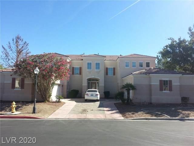 1304 Kingdom Street, Las Vegas, NV 89117 (MLS #2026112) :: Hebert Group | Realty One Group