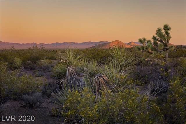 Rt 164 (Oro Flame Claim), Searchlight, NV 89046 (MLS #2029884) :: Signature Real Estate Group