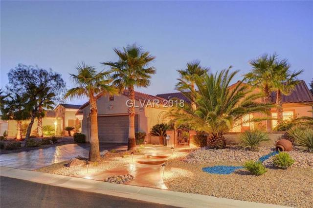 2668 Olivia Heights, Henderson, NV 89052 (MLS #2031067) :: Signature Real Estate Group